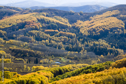 Spoed Foto op Canvas Nachtblauw Autumn. Natural landscape. Bright colors of the autumn forest on the rocky slopes of the mountains. The Altai Mountains. Eastern Kazakhstan.
