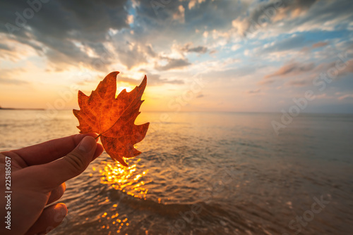Montage in der Fensternische Wasserfalle Autumn leaf and sunrise over the sea
