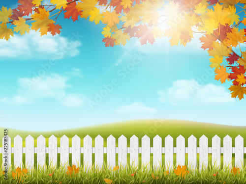 Fotobehang Lichtblauw Autumn rural landscape with white wooden fence. Maple tree branch with colorful leaves. Grass and fallen leaves. View on meadow with hills and sky with clouds and sun.