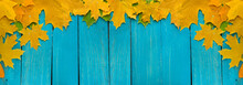 Background Of Autumn Colored Leaves, Panoramic Banner
