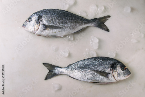 Two raw uncooked gutted sea bream or dorado fish on ice over white marble background. Flat lay, copy space. Cooking concept