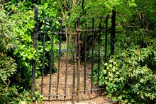 An Old, Rusty Wrought Iron Gate Leading To A Dirt Path Through A Garden With Shrubs, Trees, And Wildflowers In The Background.