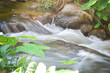 close up natural stream with rocks