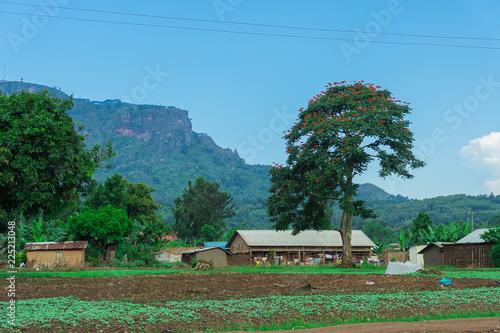 Foto op Aluminium Blauw village in Uganda