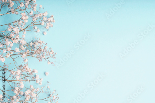 Obraz Light blue floral background with white Gypsophila flowers and copy space for your design. Baby's-breath flowers on pastel blue desktop. - fototapety do salonu