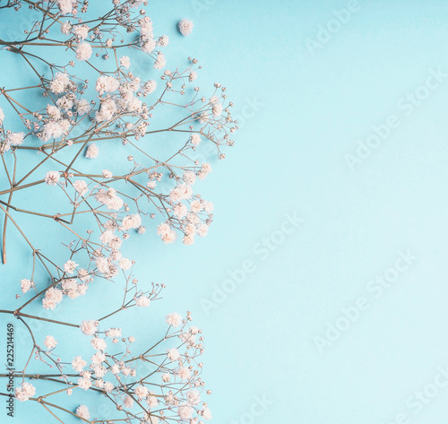 Fotografie, Obraz Light blue floral background with white Gypsophila flowers and copy space for your design