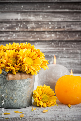 Obraz na plátne Close up of golden yellow chrysanthemum