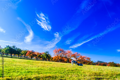 Foto op Plexiglas Donkerblauw Beautiful autumn landscape next to Benzingerode in Germany