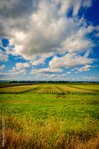 Cloudscape Farm Horizon