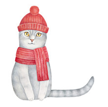Grey Smiling Kitten Dressed In Beanie Knit Cap With Pompom And Warm Wool Scarf. Long Striped Tail Can Be Used As Frame For Text Or Creative Composition. Hand Drawn Watercolour Paint On White, Cutout.