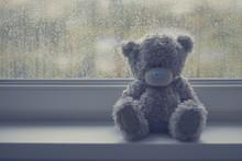 Grey Teddy Bear On A Window Si...