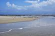 The Amelia Island Florida, Fernandina Beach is occupied by wild birds, Florida, USA