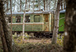 Narrow gauge railway leading through a forest. Narrow railroad riding through colorful birch alley in autumn colors. Authentic Soviet time train with impressive locomotive.