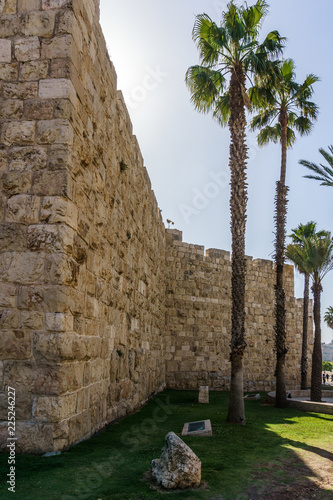 Foto op Aluminium Oude gebouw wall of an ancient old Jerusalem city with a green palm trees.