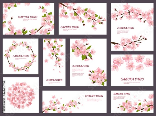 Fotografia, Obraz Sakura vector blossom cherry greeting cards with spring pink blooming flowers il