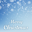 Merry Christmas background with snow flakes. Vector