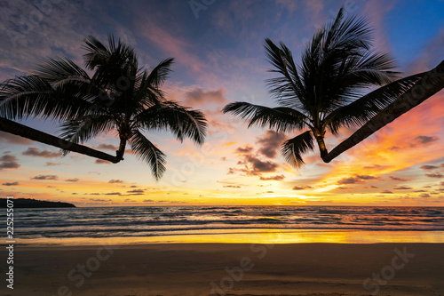 Beautiful tropical beach and sea with silhouette of coconut palm tree at sunset