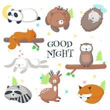 Cute Sleeping Wild Animals Vec...
