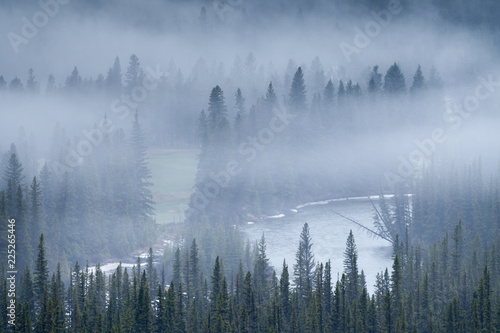 Printed kitchen splashbacks Reflection A foggy morning the forests of the Rocky Mountains of Alberta, Canada