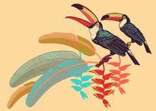 Birds Toucans, Tropical Leaves And Flowers. Template For Print On Clothes