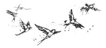 Flying Swallow Birds Set