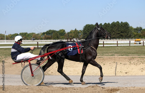 Harness racing at the Hippodrome