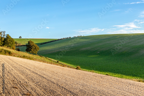 Foto op Aluminium Blauw South Downs farm landscape, with early morning light