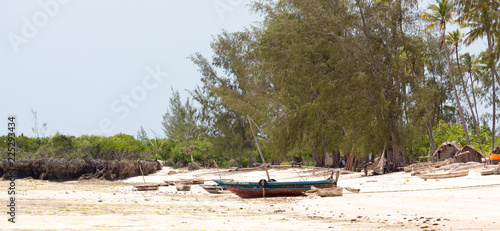 In de dag Zanzibar Fishing Boats Zanzibar