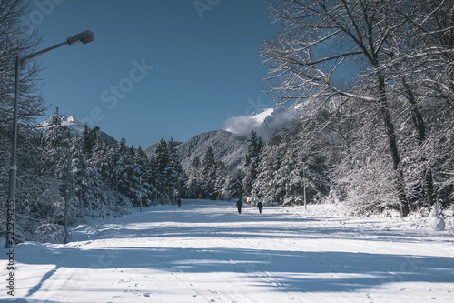 ski resort panoramic view with slope in the forest and snow mountains, Bansko, Bulgaria