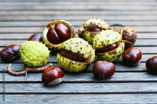 Herbstanfang Kastanien Sammeln Im Herbst Alternative Medizin