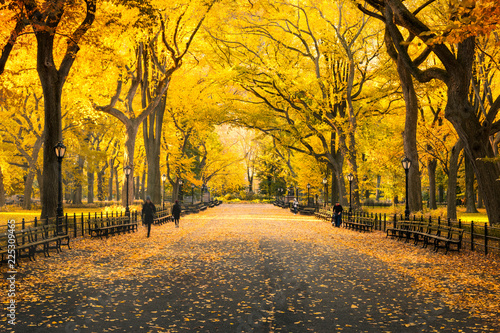 Poster Melon Herbst im Central Park in New York City, USA