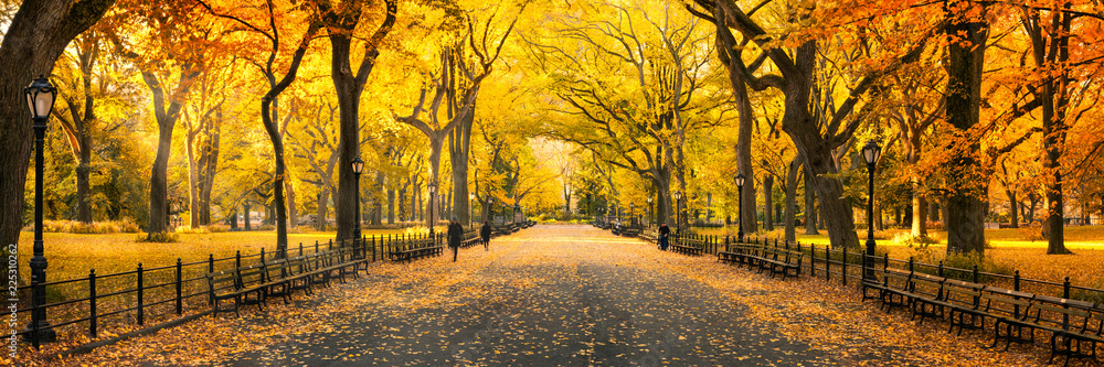 Fototapeta Herbst Panorama im Central Park in New York City, USA
