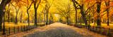 Fototapeta Nowy Jork - Herbst Panorama im Central Park in New York City, USA