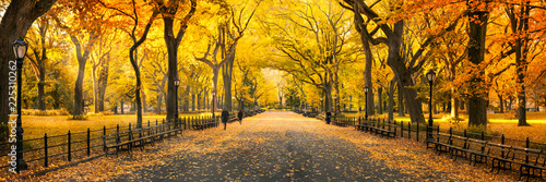 Obraz Herbst Panorama im Central Park in New York City, USA - fototapety do salonu