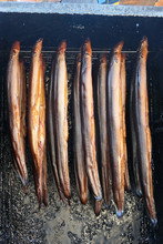 Fresh Smoked Eels Fish In Oven...