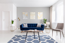 Open Space Living Room Interior With Modern Furniture Of A Navy Blue Settee, A Beige Armchair, A Coffee Table And Other Objects In Gold Color. Real Photo.
