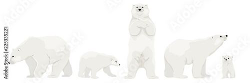 Canvastavla Set of adult polar bears and their young cubs in various poses