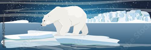 Fotografia Large polar bear on an ice floe drifting in a cold northern ocean