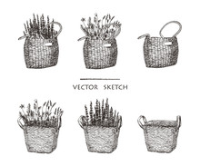 Vector Illustration. Wicker Ba...