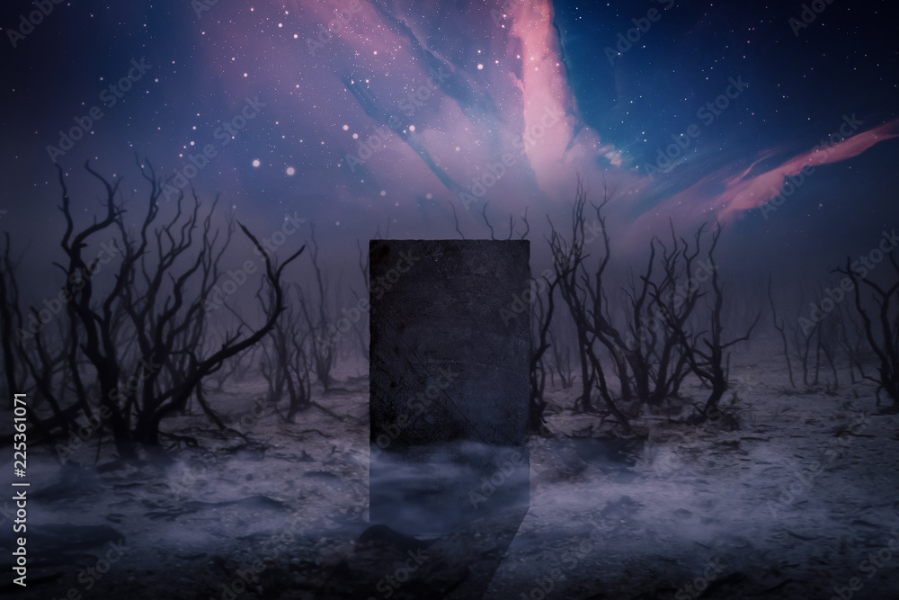 Fototapety, obrazy: Ancient Places Backgrounds - Monolith Stone in Dead Forest
