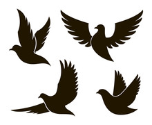Collection Of Black Dove Silhouettes Isolated On White Background