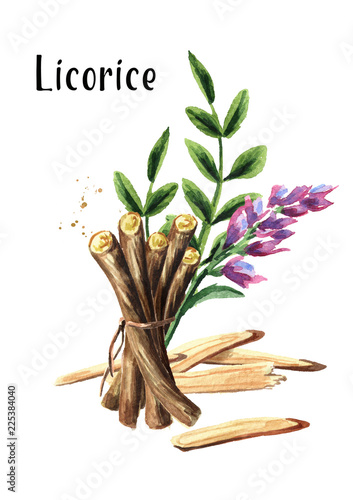 Licorice flower, leaf and root vertical composition  Medical