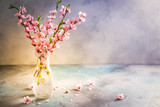 pink cherry blossom twigs in glass vase on gray background, toned