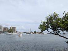 Boat Sail In Harbor