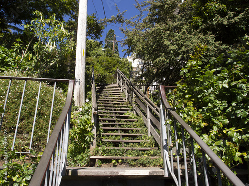 Photo Stands Stairs Filbert Street Stairs