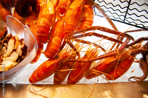 Fotografie, Obraz  Fresh, juicy and tasty poached giant river or freshwater prawn seafood on ice