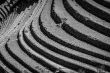 Terrasses Peruviennes - Pisac,...
