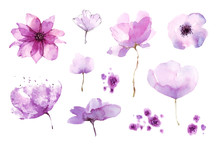 Flowers Watercolor Set