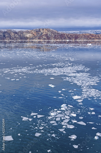 Spoed Fotobehang Poolcirkel Bare Rocks and Floating Ice in the Arctic