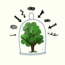 Green Tree Under A Transparent...